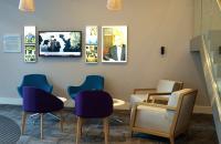 Boss Design, especialistas en sillas y sillones