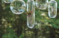 Colaboración Shane Powers + West Elm, recipientes para plantas