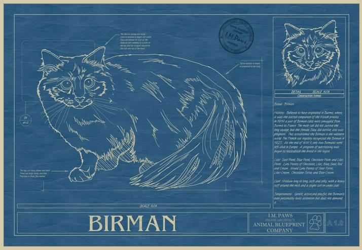 Animal blueprint company para los amantes de las mascotas decototal animal blueprint company para los amantes de las mascotas malvernweather Gallery