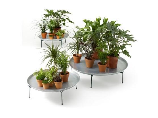 Oasis una l nea de muebles para plantas de la firma - Muebles para plantas ...