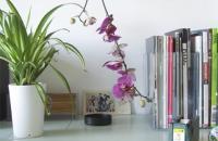 Sky Planter, un nuevo concepto en la presentación de plantas