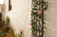 FLORA, productos para el jardín